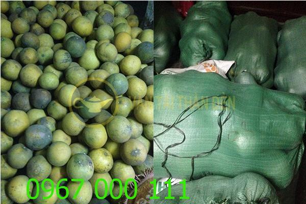Thuê xe tải chở nông sản rau củ quả tết 2016