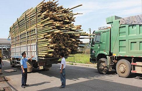 Những khó khăn gặp phải khi thuê xe tải