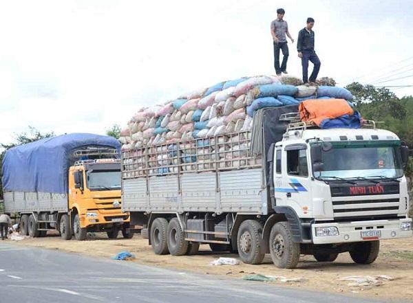 Chở hàng quá tải vi phạm giao thông