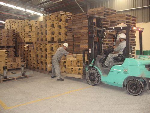 Dịch vụ vận chuyển hàng hóa chuyên nghiệp