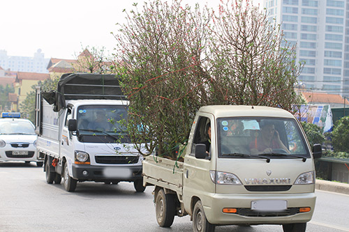 Taxi tải chở hàng hóa tết Nguyên Đán
